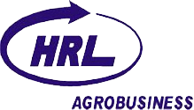 logo pt hrl international